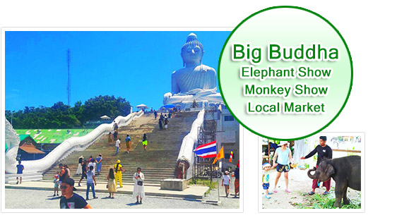 Big Buddha + Elephant + Monkey Show + Local Market