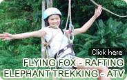 Flying Fox and Rafting and Elephant Trekking and ATV