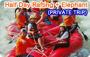 Half Day Rafting and Elephant Trekking