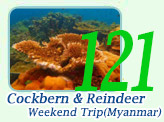 Cockbern and Reindeer 2Days1Night