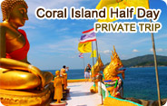 Coral Island Half Day Private Trip