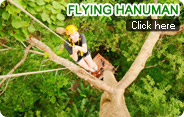 Flying Hanuman