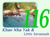 Journey to Secret Land Khao Nha Yak and Little Savanna