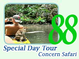 Special Day Tour Concerns Safari
