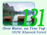 Over Water, On Tree Top 3Days Khaosok