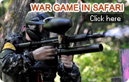 War Game in Safari